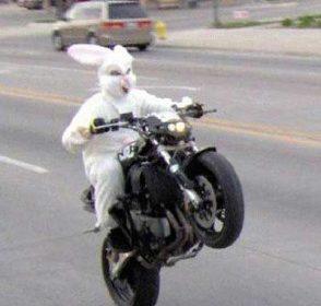 Easter Eggin' Affirmations